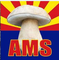 AMS_mushroomlogo
